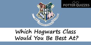 Harry Potter Class Quiz: Which Hogwarts Subject Would You Ace?