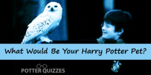 What Would Be Your Harry Potter Pet?