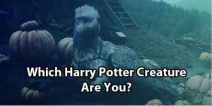 Harry Potter Animal Quiz: Which Creature Are You?