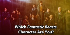 Which Fantastic Beasts Character Are You?