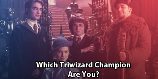 Which Triwizard Champion Are You?