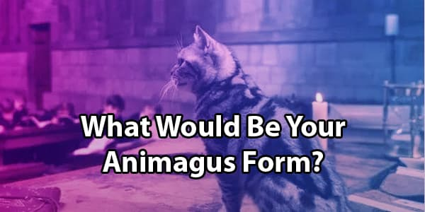 What Is Your Animagus Form?