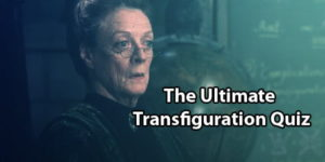 Harry Potter Transfiguration Quiz: Test Your Knowledge
